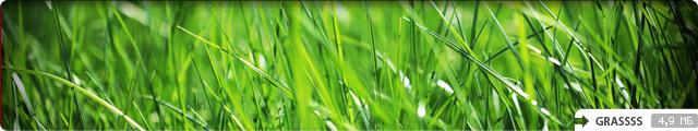 Grassss
