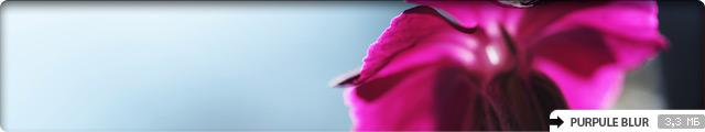 Purpule Blur