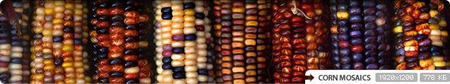 Corn Mosaics