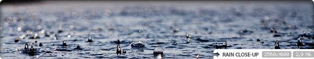 Rain Close-up