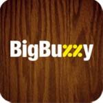 BigBuzzy или небольшой казус с iPhone 4S.