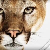 """Инструкция по """"чистой"""" установке OS X Mountain Lion"""
