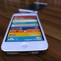 Apple выпустит адаптер для 19-пинового док-разъема