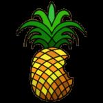 Джейлбрейк iOS 6: Инструкция, Cydia в комплекте
