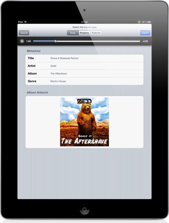 Bridge для iPad