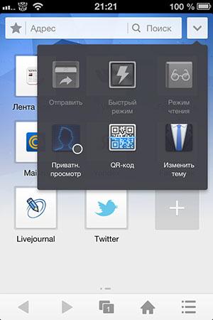 Функциональный браузер для iPad