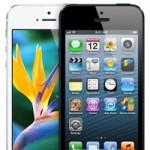 Citigroup: Apple представит iPhone 5S и iPhone mini осенью