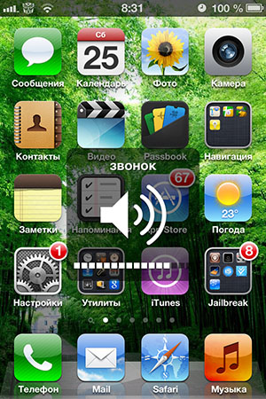 Kak ustranit problemu so zvukon na iPhone?