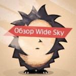 Wide Sky: Ежик и небо [Видеообзор]
