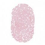 Для демонстрации работы Touch ID компания Apple выпустит специальное приложение