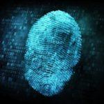 Аналитики из Wells Fargo считают, что биометрический сенсор в iPhone 5S нужен пользователям