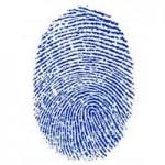 Сканер отпечатков показан на инструкции к iPhone 5S