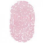 Аналитик: В этом году все новые iPhone и iPad получат Touch ID