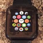 Поддельный прототип Apple Watch продан на eBay за $260