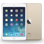 Опубликовано фото чехла для iPad Pro