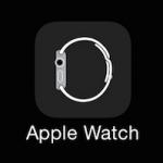Опубликованы иконка приложения Apple Watch и окно настроек часов