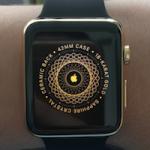 Первые Apple Watch Edition начинают поступать к покупателям