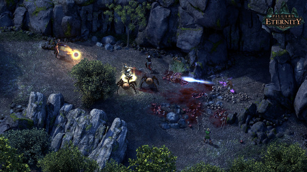 Pillars of Eternity_3