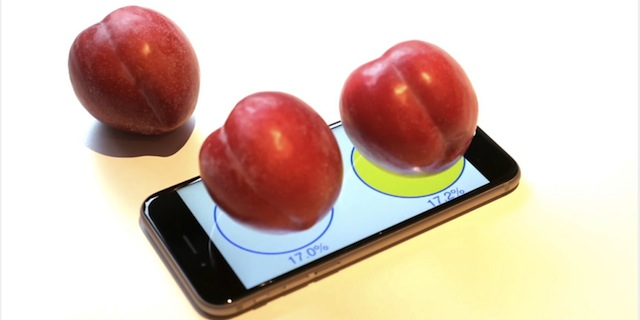 iphone-6-scale