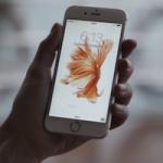 iPhone 6s/6s Plus продаются хуже, чем iPhone 6/6 Plus год назад