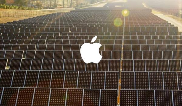 apple green data-1