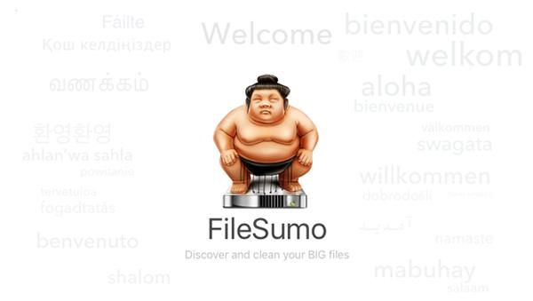 FileSumo-1