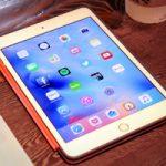 В сети появились снимки чехла для iPad mini 5