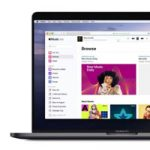 Apple запустила браузерную версию Apple Music